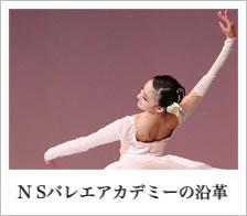 NSバレエアカデミーの沿革